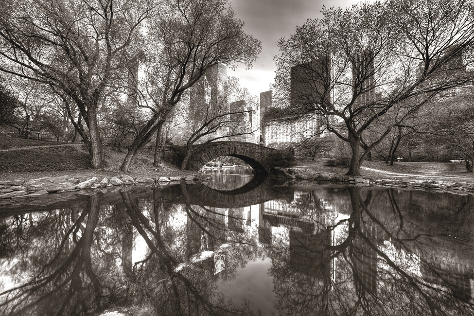 Bridge in central park new york usa wall mural photo for Central park mural