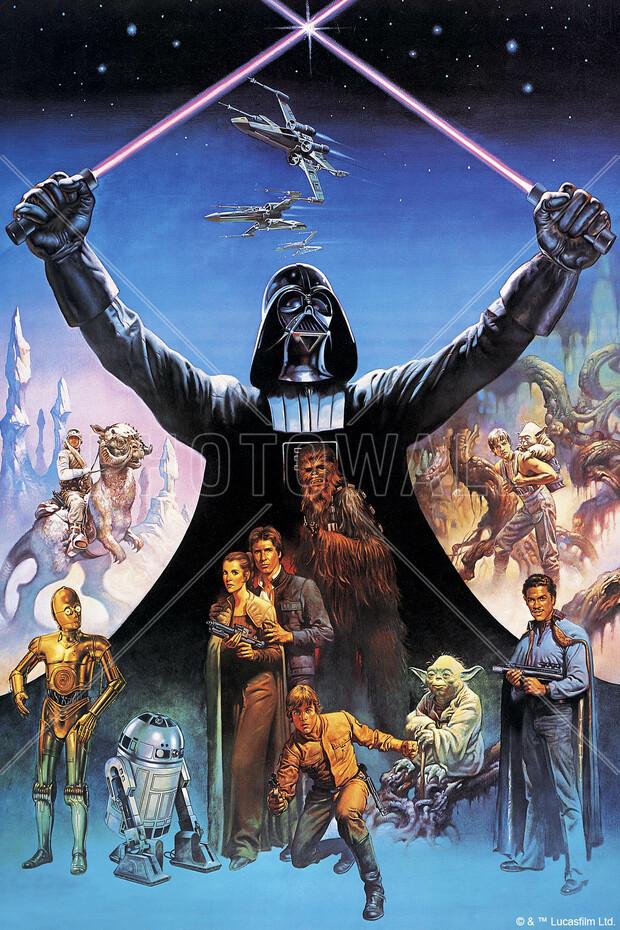 star wars darth vader lightsabers wall mural photo