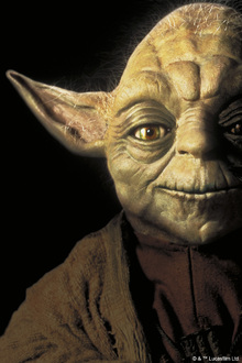 Canvasschilderij - Star Wars - Yoda Close Up