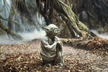 Canvastavla - Star Wars - Yoda Dagobah 2
