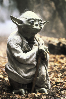 Canvas print - Star Wars - Yoda Dagobah Close Up
