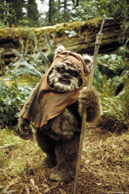 Star Wars - Ewok Wicket