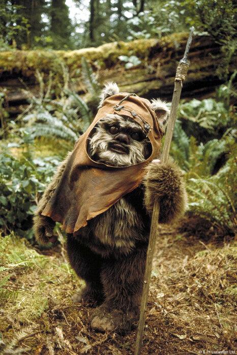 Star Wars Ewok Song Return Jedi