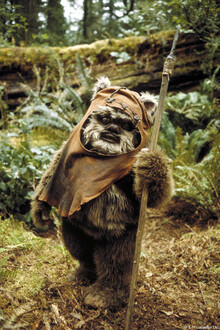 Lærredsprint - Star Wars - Ewok Wicket