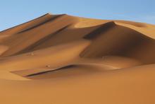 Fototapet - Sahara Desert