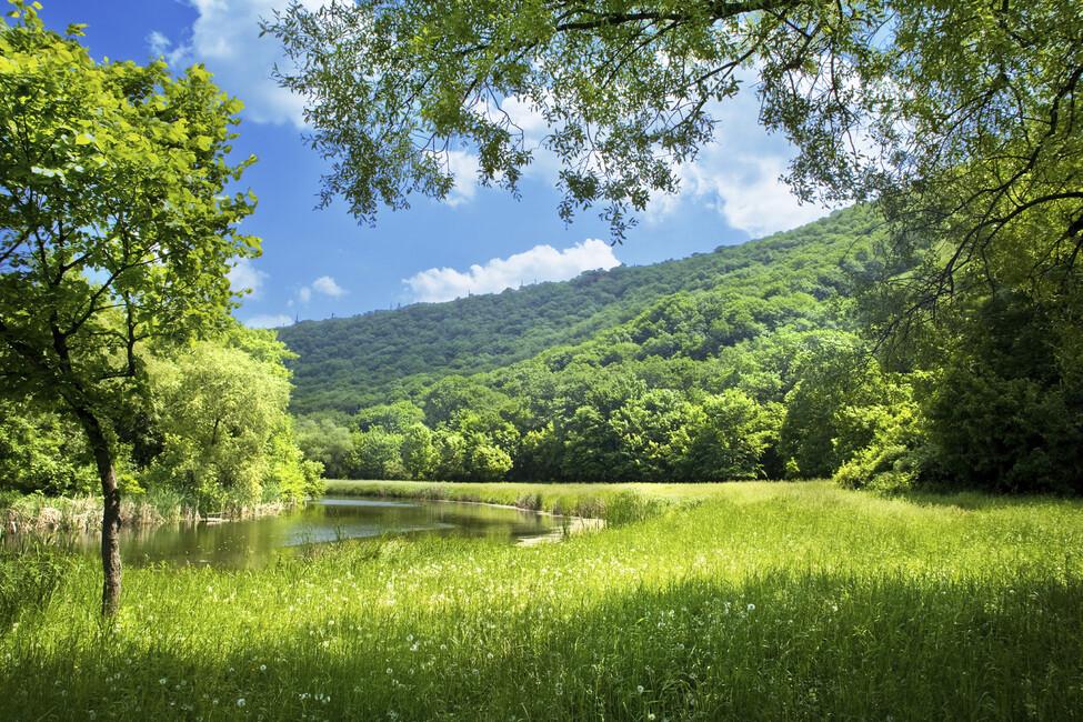 summer landscape image wallpaper - photo #25