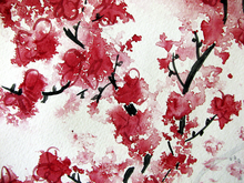 Wall mural - Cherry Blossom Watercolor