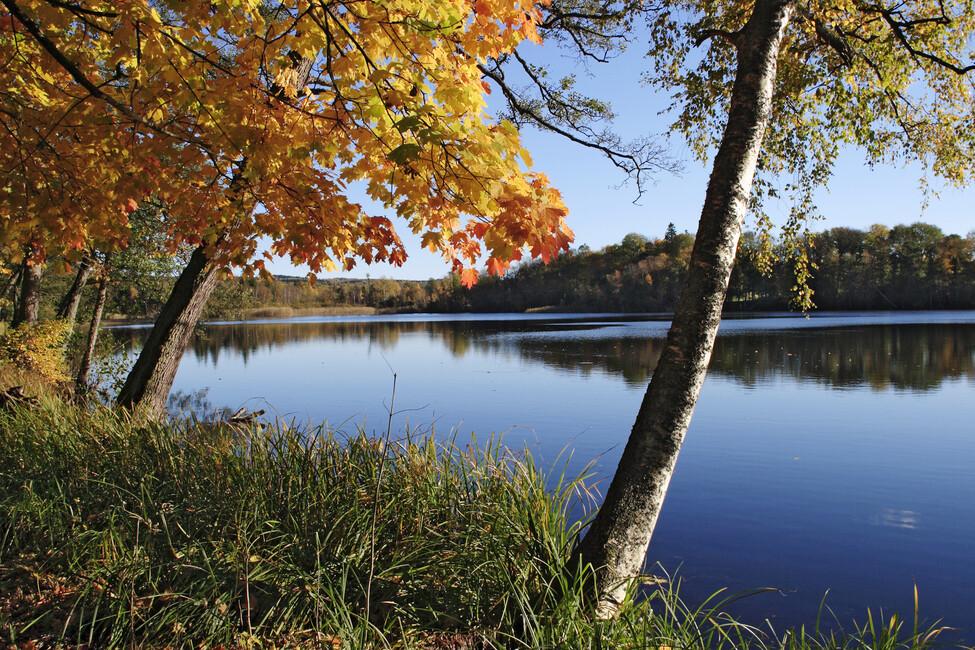 Autumn Lake Wall Mural Amp Photo Wallpaper Photowall