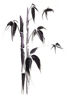 Canvastavla - Bamboo Illustration