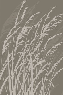Canvas print - Grass - Brown