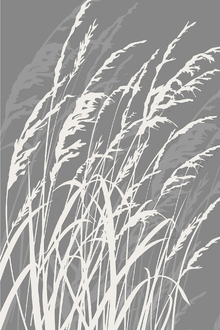 Wall mural - Grass - Grey