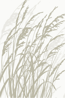 Wall mural - Grass - White