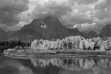 Lærredsprint - Grand Teton - b/w