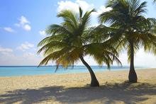 Fototapet - Maldives