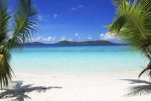 Fototapet - Virgin Islands