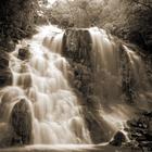 Fototapet - Nature Scenery - Sepia