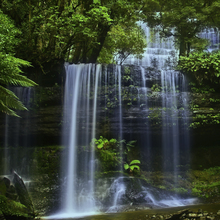 Wall mural - Tasmania Waterfall