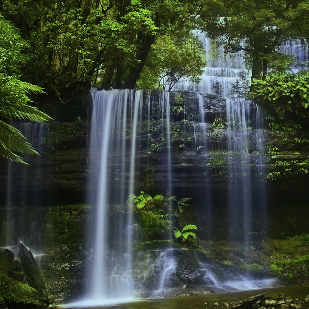 tasmania waterfall wall mural photo wallpaper photowall