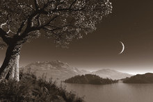 Fototapet - Romantic Night - Sepia