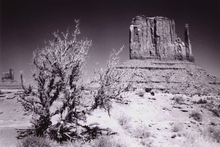 Fototapet - Monument Valley - Utah