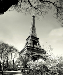 Canvas print - Eiffel Tower