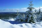 Valokuvatapetti - Winter Landscape