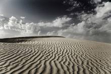 Fototapet - Desert Dune Sahara