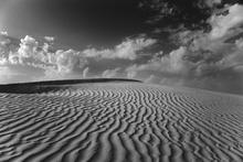 Fototapet - Desert Dune Sahara - b/w