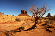 Fototapet - Arizona - Valley Navajo