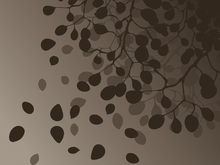 Wall mural - Birch - Fall