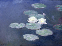 Canvas print - Waterlilies - Claude Monet