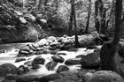 Fototapet - Mountain Waterfall - b/w