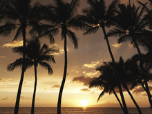 Fototapete - Hawaii Sunset