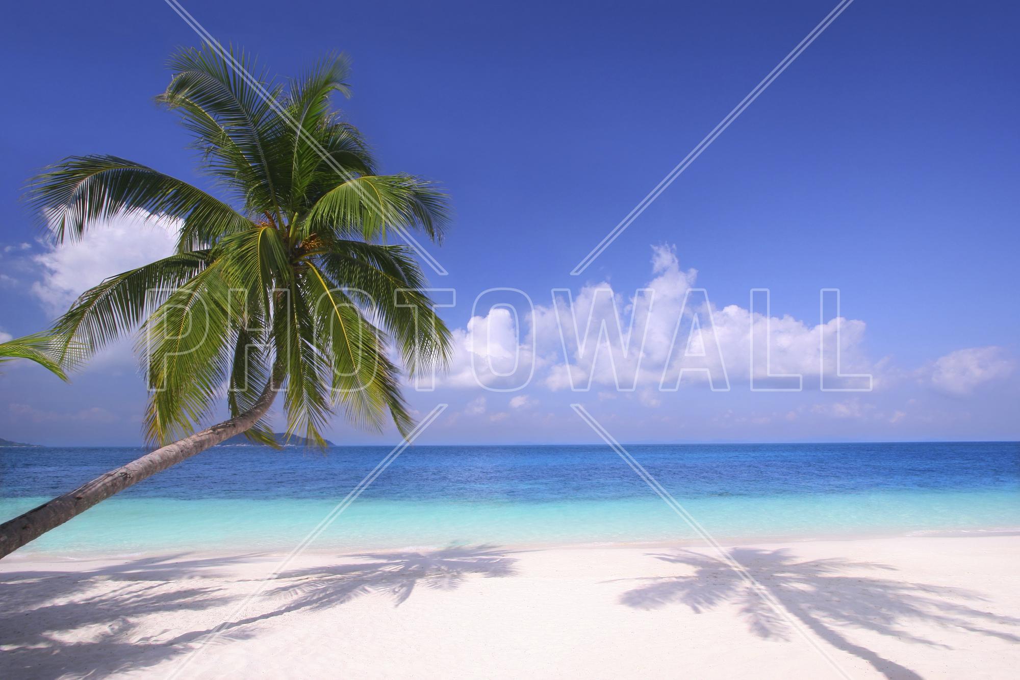 wall mural island paradise