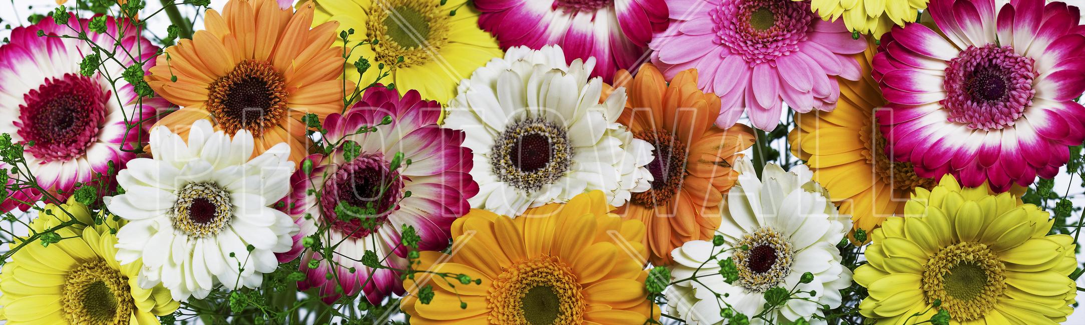 panoramic flowers colors wall mural photo wallpaper photowall panoramic flowers colors