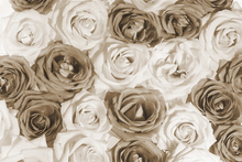 Canvas print - Nice Roses 2
