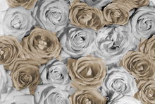 Canvas print - Nice Roses 1