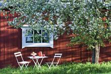 Fototapet - Garden Holiday
