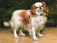 Canvastavla - King Charles Spaniel, George Sheridan Knowles
