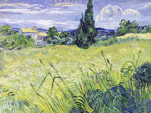 Canvas print - Field, Vincent van Gogh