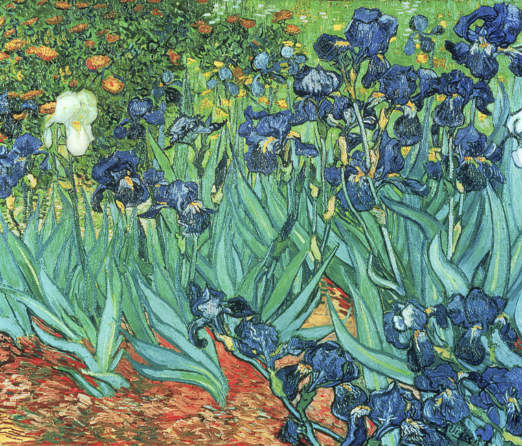 Irises vincent van gogh wall mural photo wallpaper for Mural van gogh
