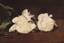 Canvastavla - Branch of White Peonies, Edouard Manet