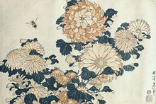 Wall mural - Hokusai, Katsushika - Chrysanthemums