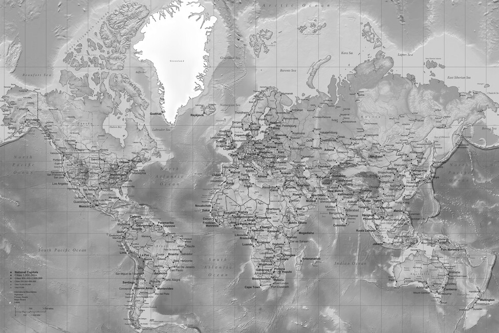 World Map Detailed With Roads Grey Wall Mural