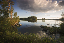 Leinwandbild - Swedish Summer Landscape