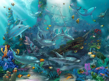Wall mural - Dolphin Treasures