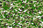 Canvas print - Camouflage - Green