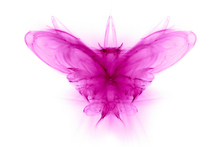 Canvas-taulu - 3D Butterfly