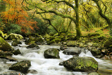 Fototapet - Dartmoor River