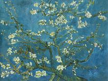 Wall mural - Van Gogh - Almond Blossom